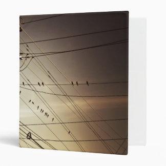 """birds on a wire """"binder"""" binder"""