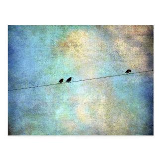 Birds on a Wire Digital Art Postcard