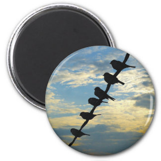 Birds on a Wire Magnets