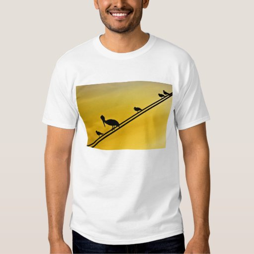 Birds On A Wire T-shirts