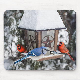 Birds on bird feeder in winter mouse pad