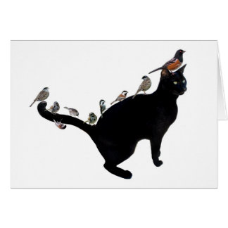 Birds on Cat Card