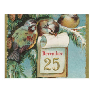 Birds on Decemeber 25th Postcard