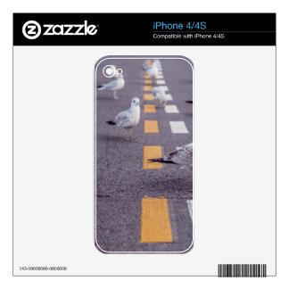 Birds on Road iPhone 4S Decals