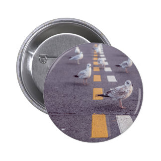 Birds on Road Pinback Button