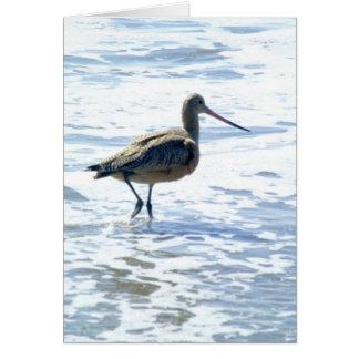 Birds on Stinson Beach Image #1 Card