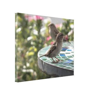 Birds on Table Canvas Print