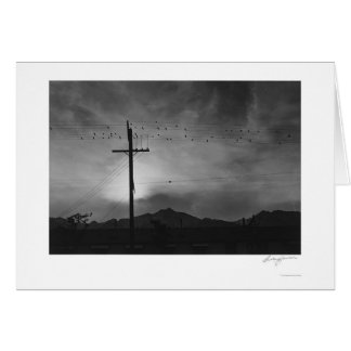 Birds On Wire, Evening 1943 Card