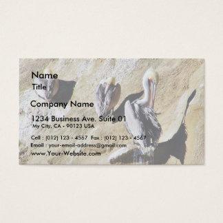 Birds Pelicans Poop Business Card