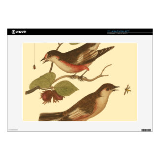 "Birds Perched on Branches Eating Insects 15"" Laptop Skins"