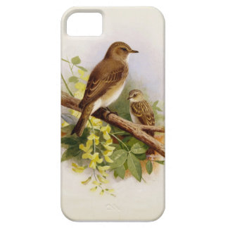 Birds perched Together iPhone Case iPhone 5 Cover