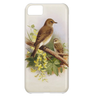Birds perched Together iPhone Case iPhone 5C Case