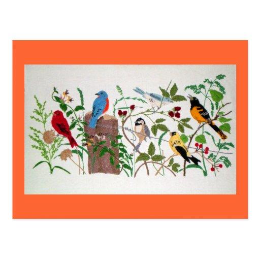 Birds Post Card