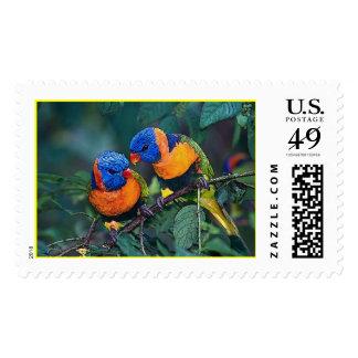 Birds Postage