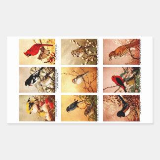 Birds Rectangular Sticker