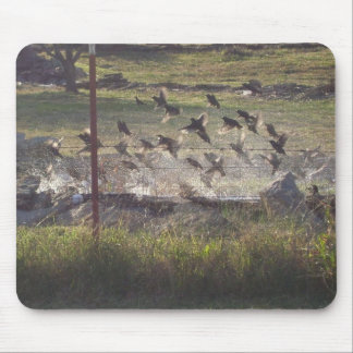 Birds Rising Bookmarkers - Customize! Mouse Pad