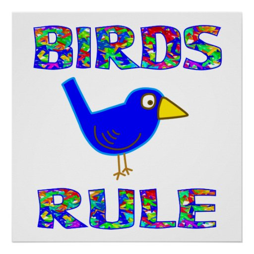 BIRDS RULE Poster