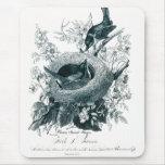 Birds Sketch de tía Abby Alfombrilla De Ratón