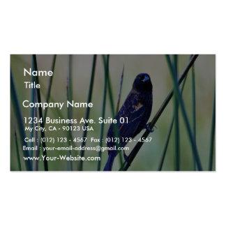 Birds Swamps Business Card