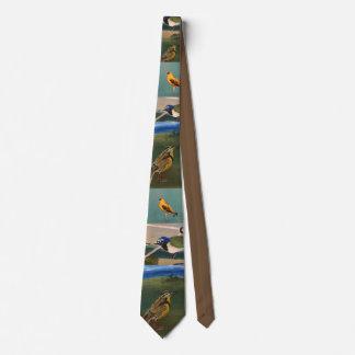 Birds Tie