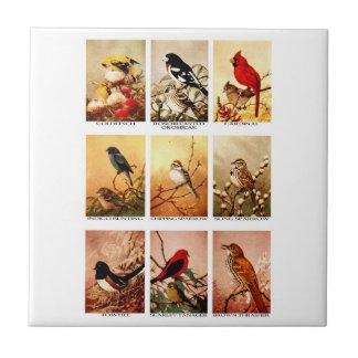 Birds Tiles