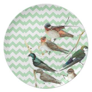 Birds vintage, colors pie, chevron green melamine plate