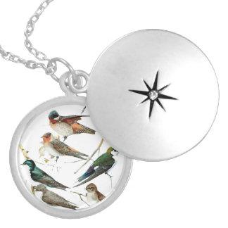 Birds vintage, colors pie, Necklace woman