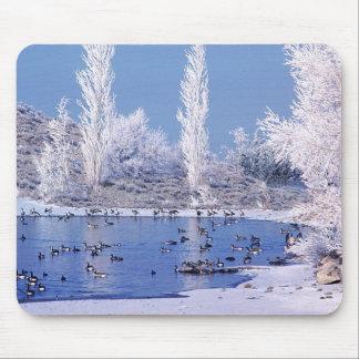 Birds, Wetlands, Pogonip Duck Pond Mouse Pad