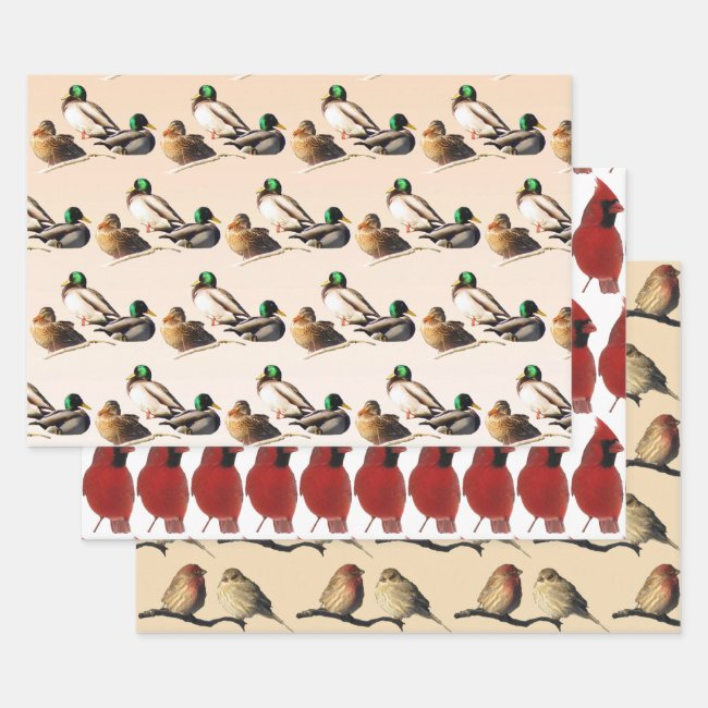 Birds Wrapping Paper Sheet Set
