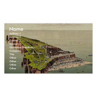 Birdseye view, Helgoland, Germany rare Photochrom Double-Sided Standard Business Cards (Pack Of 100)