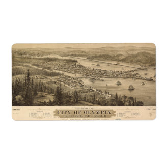 Birdseye view of Olympia, Washington (1879) Label