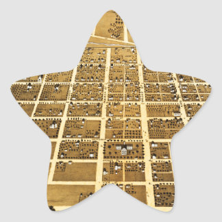 Birdseye view of Urbana, Illinois (1869) Star Sticker