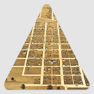 Birdseye view of Urbana, Illinois (1869) Triangle Sticker