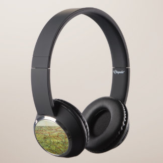 Birdseyes View Great Plains Headphones