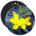 Birdsfoot Trefoil 3 Button