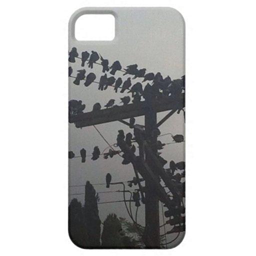 BirdsOnAWire iPhone 5 Case