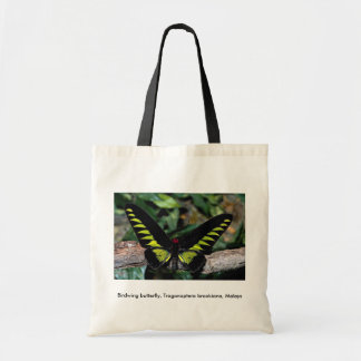 Birdwing butterfly, Trogonoptera brookiana, Malays Budget Tote Bag