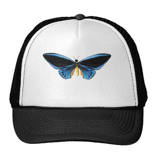 Birdwing Butterfly Trucker Hats