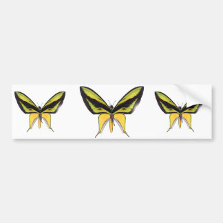 BirdWingX Butterfly Bumper Sticker