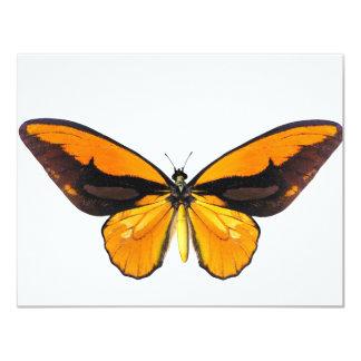 "BirdWingY Butterfly 4.25"" X 5.5"" Invitation Card"