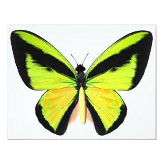 "BirdWingZ Butterfly 4.25"" X 5.5"" Invitation Card"