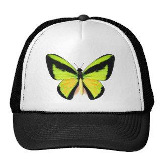 BirdWingZ Butterfly Trucker Hat