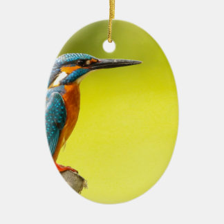 birdy bird boo valantines day ceramic ornament