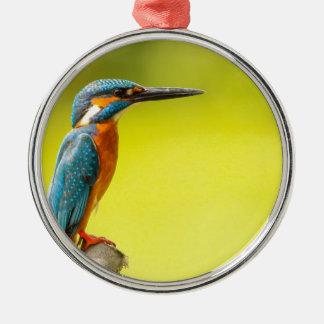 birdy bird boo valantines day metal ornament