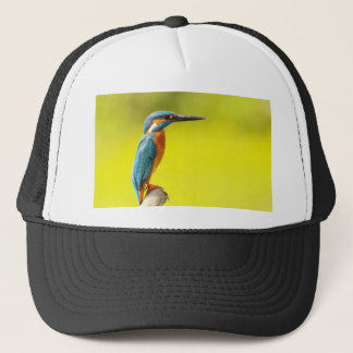 birdy bird boo valantines day trucker hat