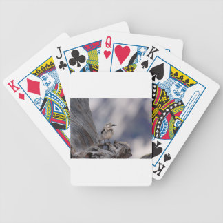 birdy love bicycle playing cards