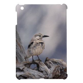 birdy love case for the iPad mini