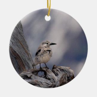 birdy love ceramic ornament