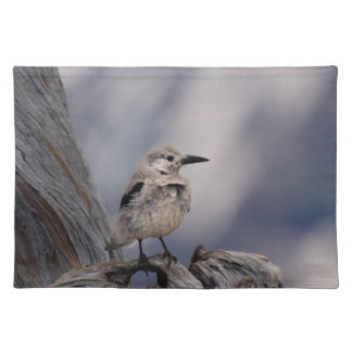 birdy love cloth placemat