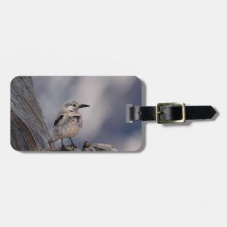 birdy love luggage tag